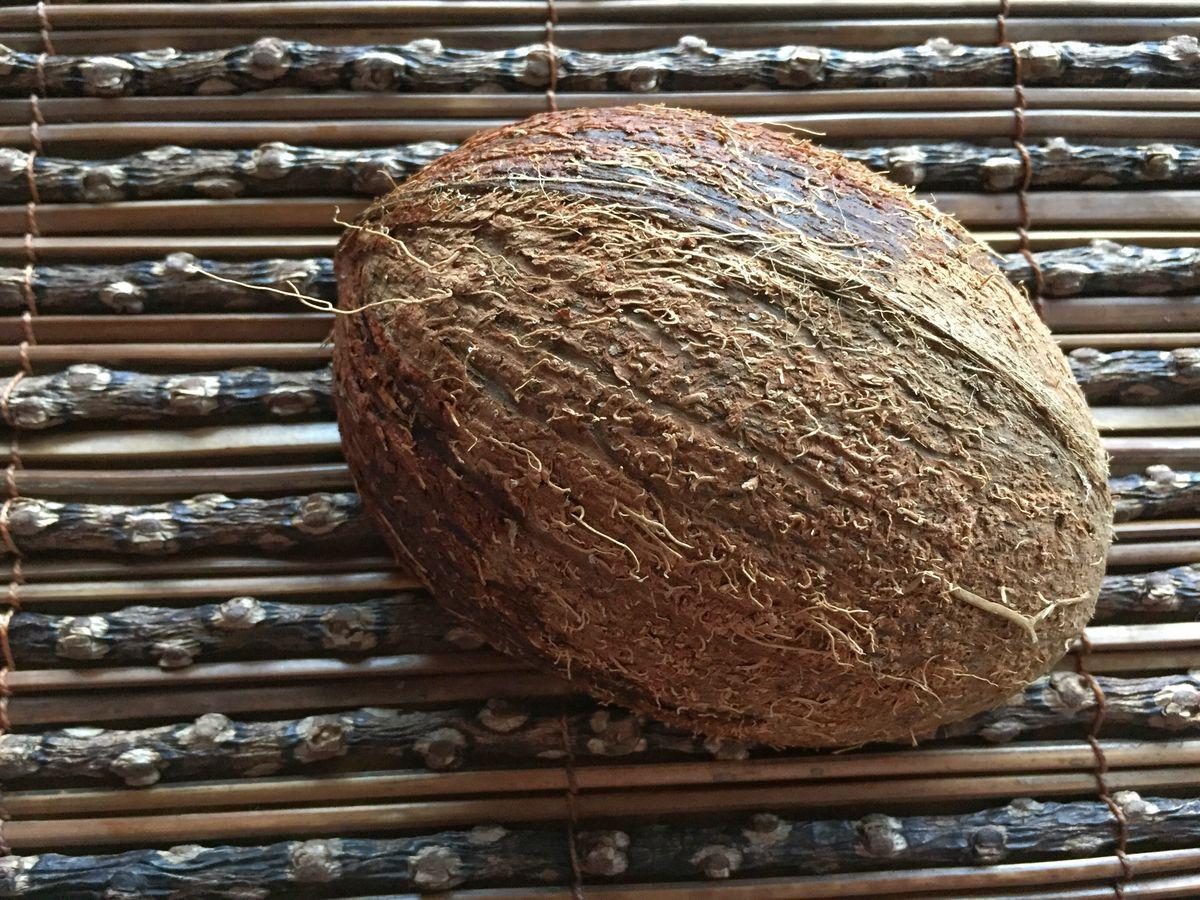 Halbierte Kokosnuss braun
