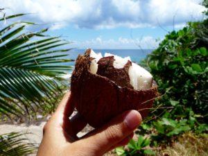 Hand mit brauner Kokosnuss vor Meerhintergrund